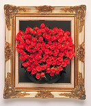 Red roses in frame