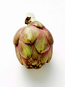 A Single Artichoke