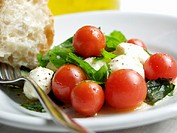 Mozzarella and Cherry Tomato Salad with Bread