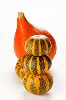 Mini-pumpkins and Hokkaido squash