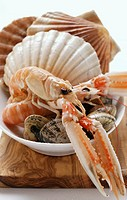 Scampi and shellfish in white dish