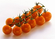 Cherry Tomatoes with Vine (thumbnail)