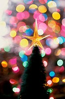 Close-up of a Christmas star on top of Christmas tree (thumbnail)