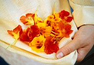 Woman holding red and yellow nasturtiums
