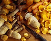 Assorted mushrooms, carrots and a knife on wooden background