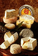 Several Soft Cheeses