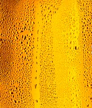 Glass of light beer in close-up