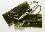 Two Leaves of Wakame Algae