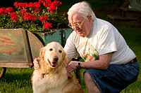 80 year old man with golden retriever