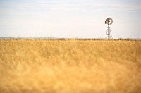 windmill in the Australian outback