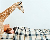 Sleeping boy with giraffe in his room