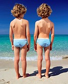 Twin boys standing by the sea