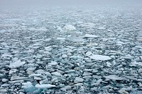 Pack ice, floating masses of ice formed from sea water, in the Hinlopen Strait off of Spitsbergen Island in Northeast Svalbard Nature Preserve in Spit...