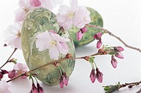 Easter eggs with cherry blossom