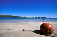 beach in Langebaan, South Africa