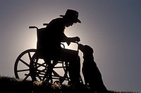 Man in a wheelchair with his dog in an idyllic outdoor setting.