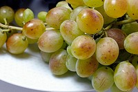 White grapes (Vitis vinifera)