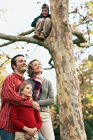 Boy sits in tree, family smiles below him