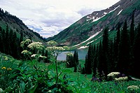 Emerald Lake Schofield Pass Gunnison National Forest Colorado, USA
