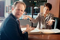 Businesswoman and a businessman discussing in an office