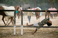 Delhi Racecourse. Child watching the excercising of racehorses. Central Delhi. Delhi. India.