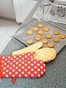Oven gloves by tray of biscuits