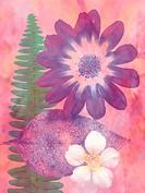 Flowers & Fern