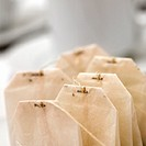 Close-up of teabags