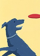 Dog catching flying disc
