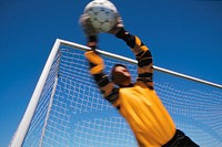 Male soccer goalie catching ball, low angle view
