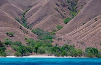 Komodo islands. Indonesia