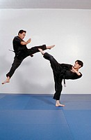 Martial Arts Kick Fighting