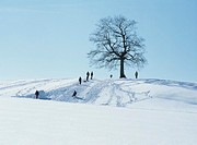 People luging on a hill, Germany