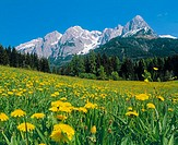Spring on the Tennengebirge in Salzburg country, Austria