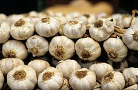 Garlic. Vic market. (Barcelona). Spain
