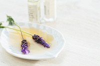 Lavender flowers soaking in a dish of essential oils