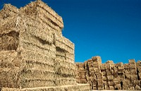 Straw bales