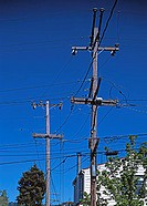 Telephone and Electricity Cables, Oakland California, USA