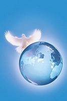 Globe with dove