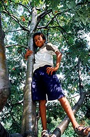 Portrait of a boy standing on a tree