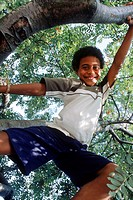 Portrait of a young boy standing on a tree