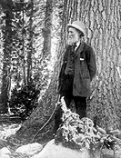 John Muir (1838-1914), US naturalist, traveller, writer and geologist. Muir was born in Scotland and emigrated to the USA with his family in 1849. Aft...