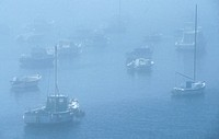 Sailboats at port in foggy weather, Cote d emeraude, Brittany, France