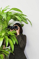 Businesswoman hiding behind plant with binoculars