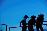Silhouette of three cowboys standing on fence, rear view