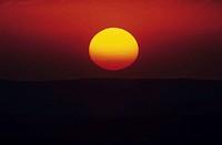 Sunset over savannah, Masai Mara National Reserve, Kenya