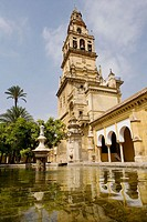Patio de los Naranjos, courtyard and minaret tower of the Great Mosque. Córdoba. Andalusia, Spain