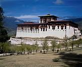 Paro-Dzong Temple Bhutan