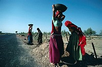 Women Workers Building Highway, Rural Scene, Rajasthan, India