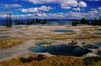 West Thumb Geyser Basin Yellowstone National Park Wyoming, USA